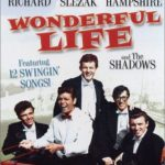 Swingers' Paradise / Wonderful Life